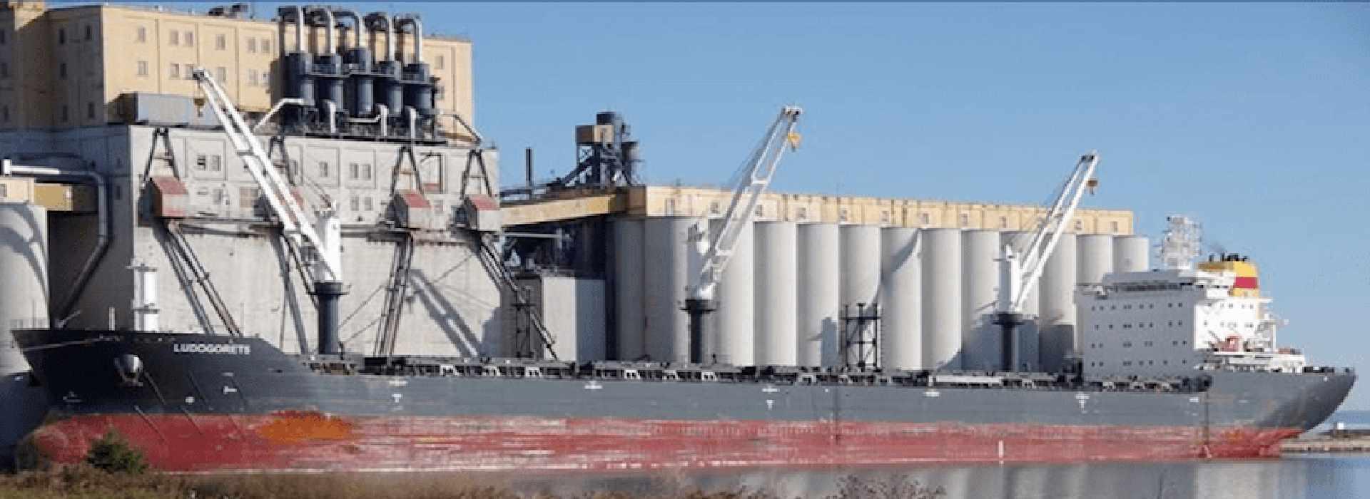 Le navi con il grano turco e russo che riforniscono i pastifici Casillo e Divella. E il silenzio di Coldiretti