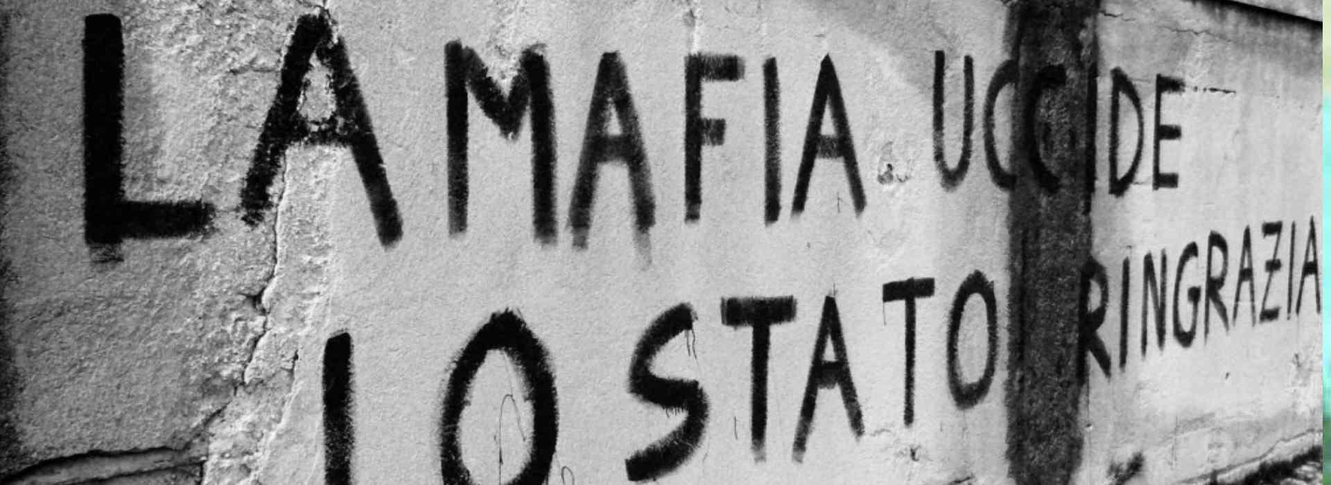 """Il sondaggio shock tra gli studenti: """"Lo Stato non combatte abbastanza la mafia"""" perché """"i boss sono parte integrante"""""""